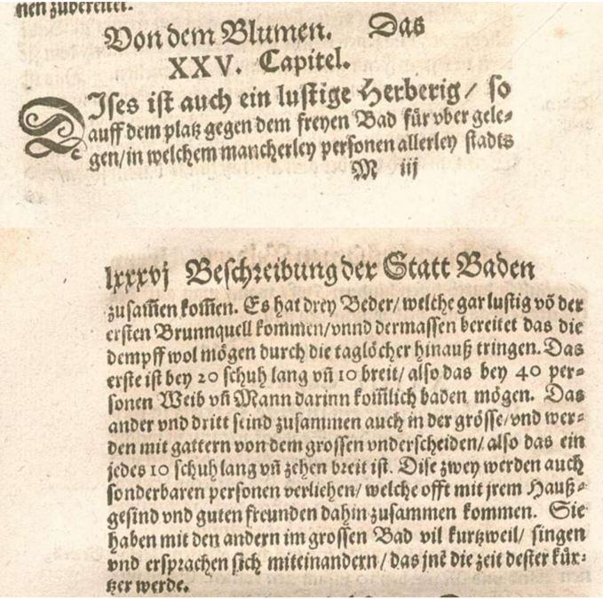 Der Text von Heinrich Pantaleon von 1578